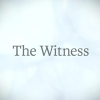 The Witness Testbericht